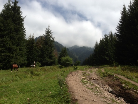 The Feeling of Success - Daily Diary - Hiking in the Mountains